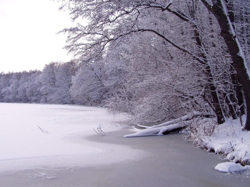 Погода в берлине в декабре