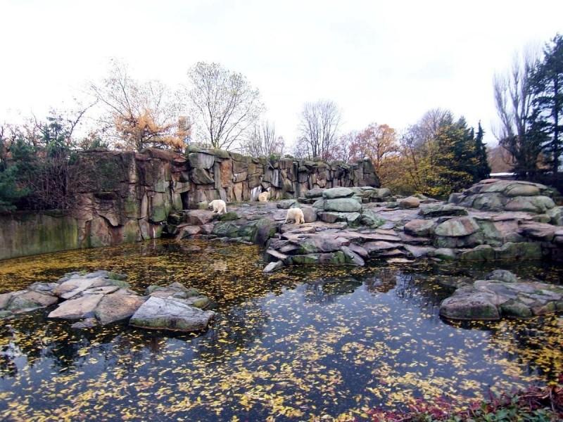 Берлинский зоопарк 15